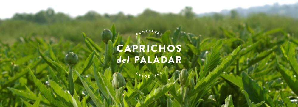 IMAGEN GENERAL CAPRICHOS DEL PALADAR